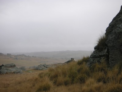 A misty view of Central Otago
